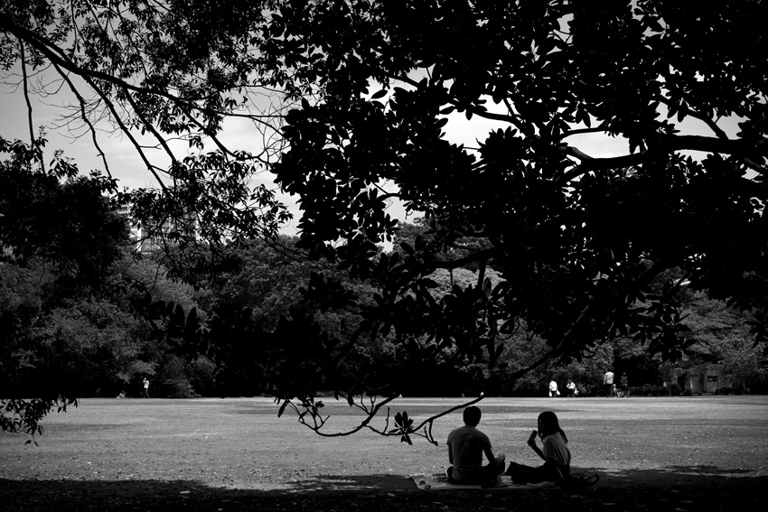 Couple sitting in tree shade