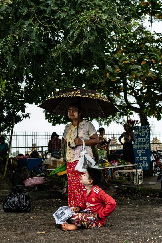 傘を差して木の下に立つ女性