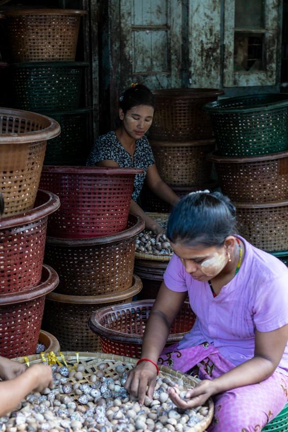 うずらの卵の入った籠に囲まれて働く女性