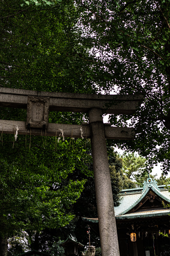 Torii and prayer hall in Koyama Hachiman Jinja Shrine