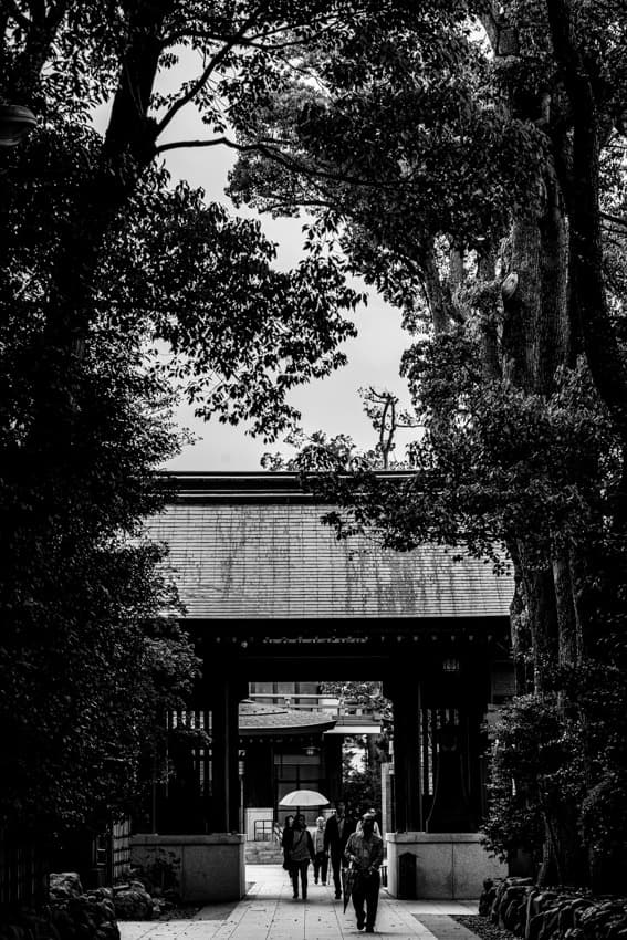 寒川神社の木に挟まれた南門
