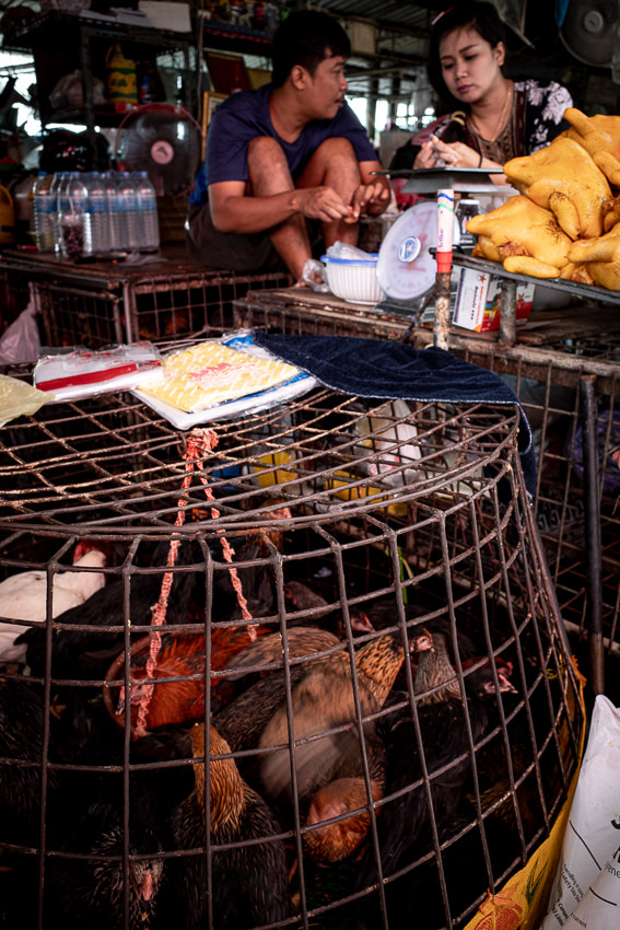 Breathing chickens beside roasted chickens in Khlong Toei Market