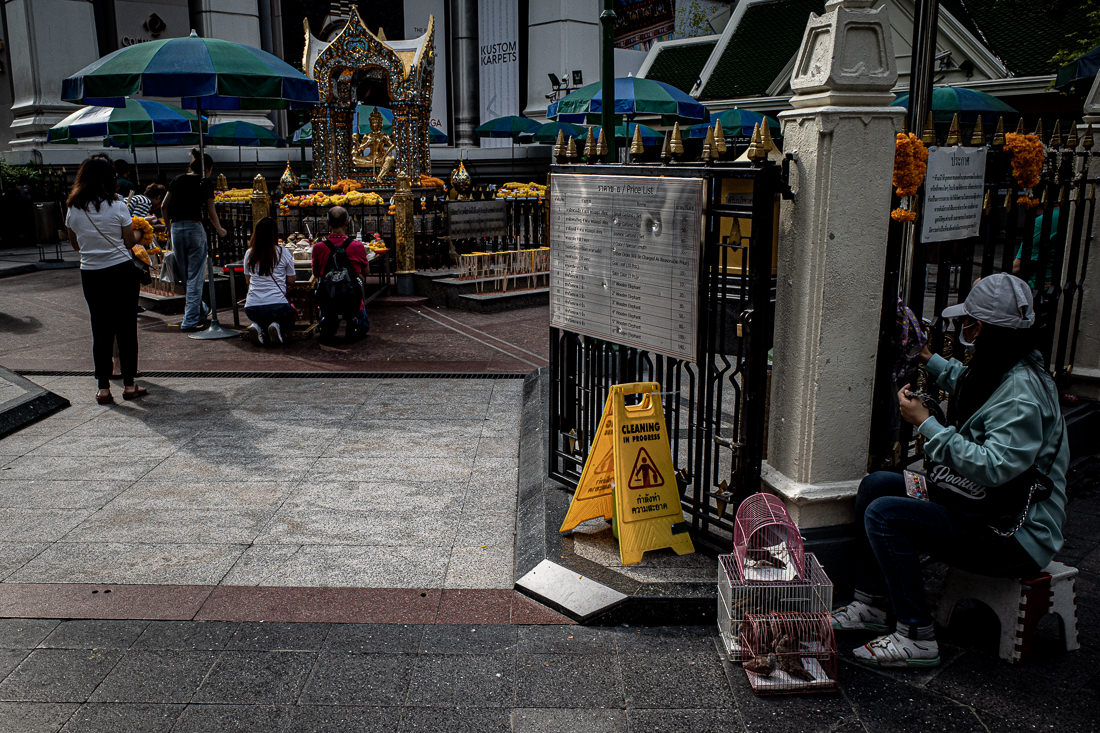 Cage for Life Release in Erawan shrine