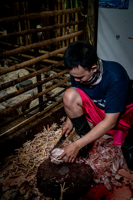 Man slaughtering chickens in the hut