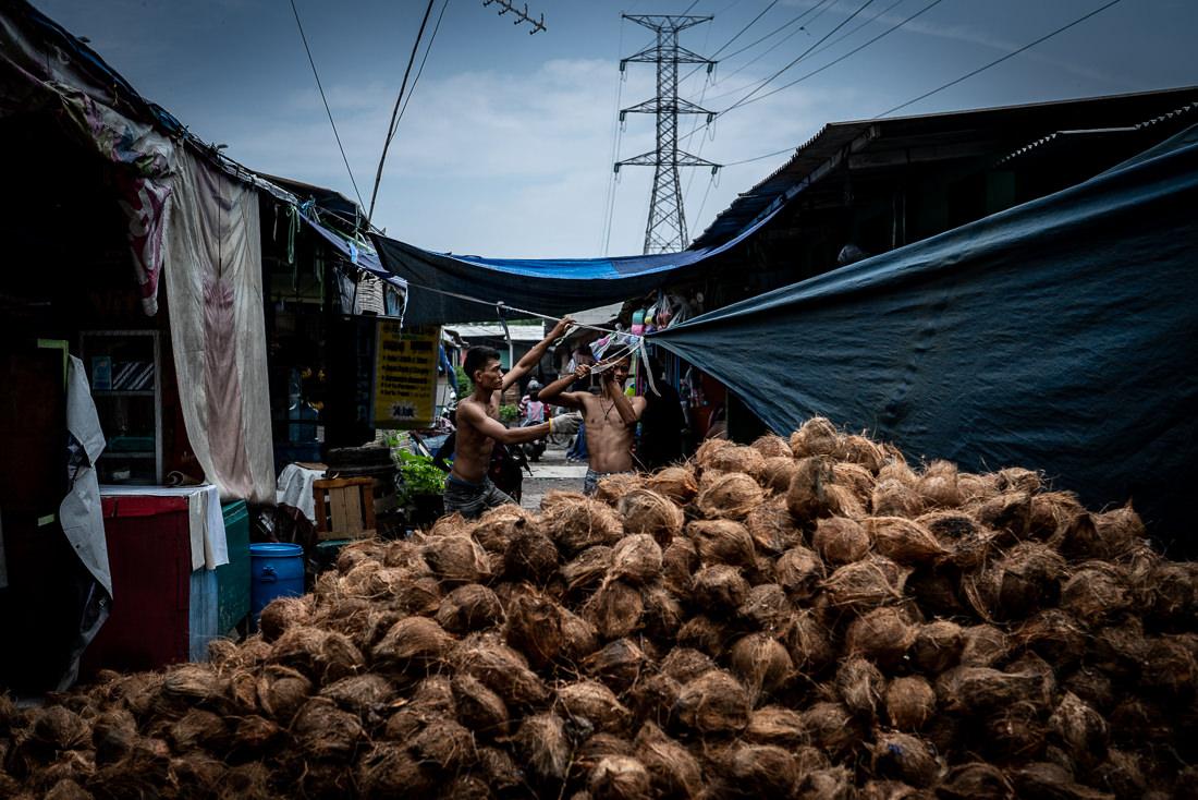 路地の真ん中に山積みになったココナッツ