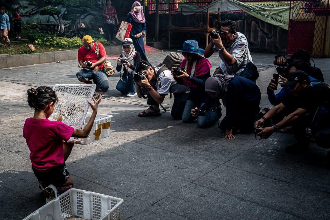 Girl releasing birds in Jin De Yuan