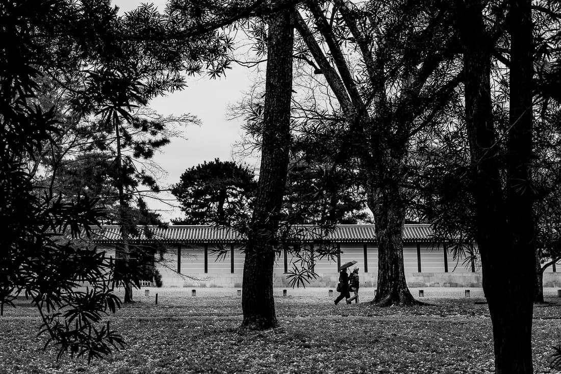 Figures walking through the trees of Kyoto Gyoen