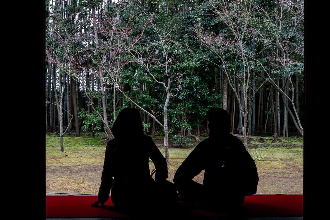 高桐院の客殿でくつろぐ夫婦