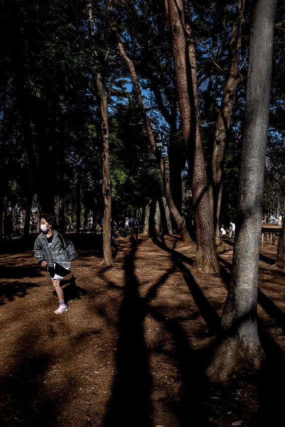 木立の中を走る女の子