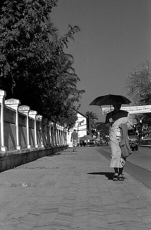 Buddhist monk walking with black sunshade