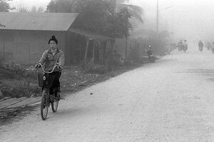 Woman heading for market by bicycle
