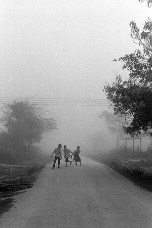 Three kids in morning fog