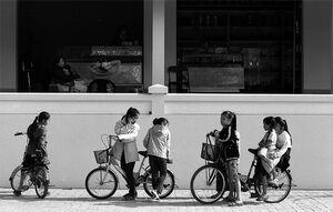 Seven girls making bicycle trip