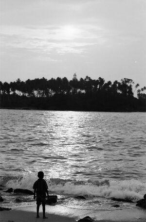 波打ち際から島を眺める男の子