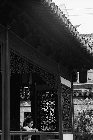 Woman  relaxing by window in Yuyuan Garden