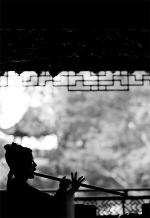 Silhouetted Woman playing flute