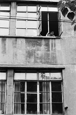 Boy leaning out of upstairs window