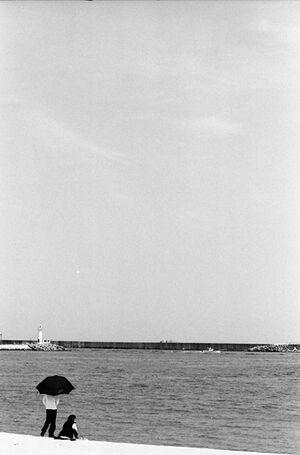 束草の海辺で佇むカップル