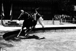 Feat of horsemanship in Korean Folk Village