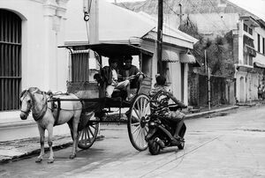 Motorbike stopping beside horse carriage