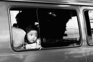 Boy watching outside through car window