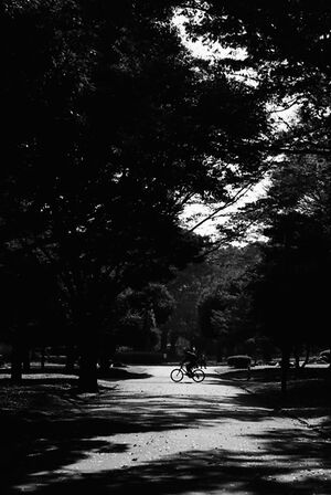 Bicycle running in Yoyogi Park