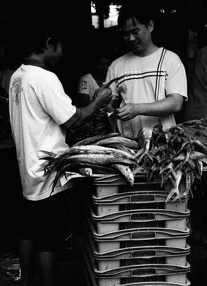 魚の仲買人