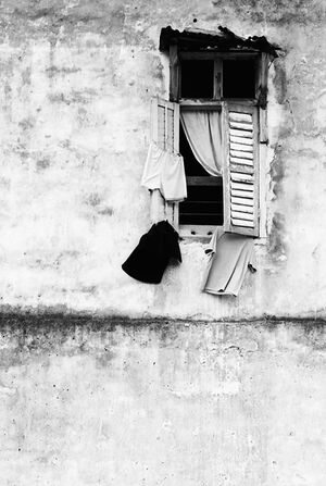 Window and laundries