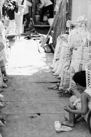 路地にひとりで腰を下ろしていた女の子