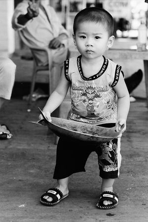 Little boy holding cooking vessel