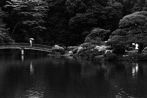 Bridge in Shinjuku Gyoen Park