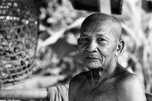 Old man of bald head