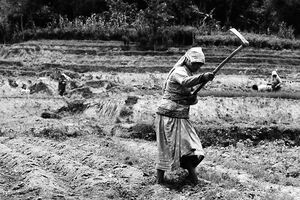 Woman doing farm work