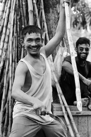 Man cutting bamboos happily
