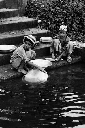 Kids washing plates