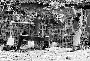 Boy hauling water