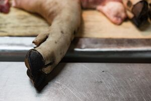 Hand of pork in butcher