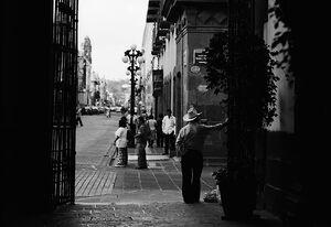 Man standing in street corner