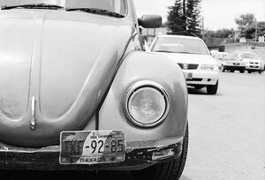 Car registration plate of beetle