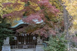 Shohachiman Jinja Shrine