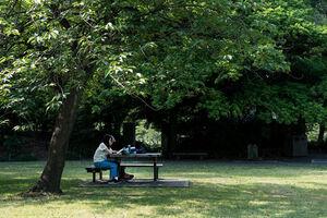 清澄庭園で読書するカップル