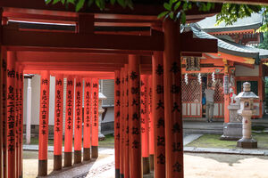 Torii standing in a line