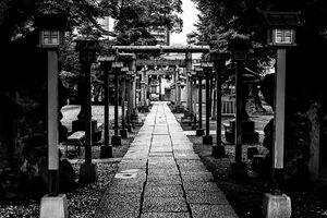 千住神社の参道