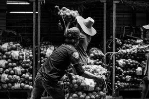 玉葱の入った袋をバケツリレーする男たち