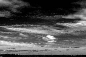 小浜島の地平線に並ぶ電線