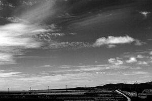 小浜島の道