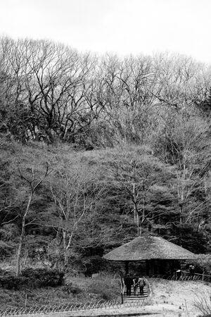 小径の先に見える小屋