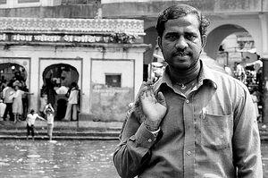 ゴダヴァリ川の川辺に立つ男