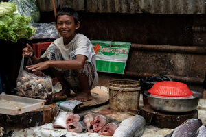 Boy selling fishesl