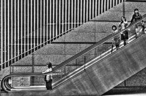 Women on escalator